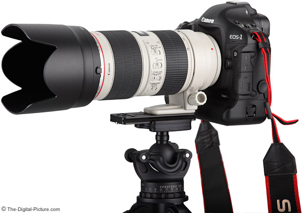 canon-ef-70-200mm-f-2.8-l-is-ii-usm-lens-on-eos-1d-mark-iv